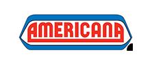 americanalogooptimized
